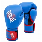 Детские перчатки EVERLAST Prospect Youth Boxing Gloves