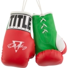 """Перчатки сувенирные TITLE Oscar De La Hoya 5"""" Mini Boxing Gloves"""