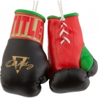 "Перчатки сувенирные TITLE Oscar De La Hoya 5"" Mini Boxing Gloves"